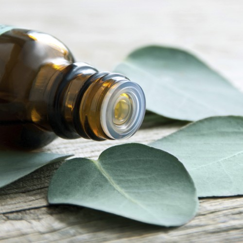tea tree essential oil in amber bottle